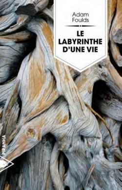CVT_Le-labyrinthe-dune-vie_9753